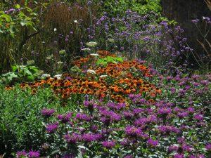 National Garden Scheme, Somerset