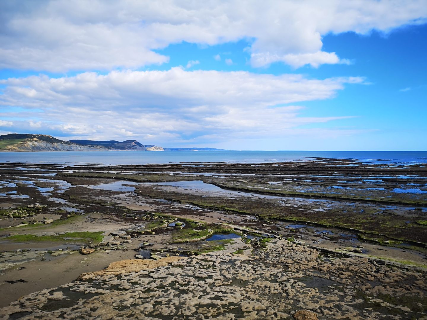 Low tide at Lyme Regis, Dorset, England