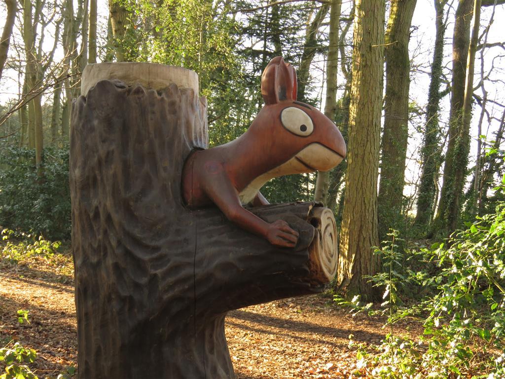 Squirrel, Zog Trail, Westonbirt Arboretum, Gloucestershire