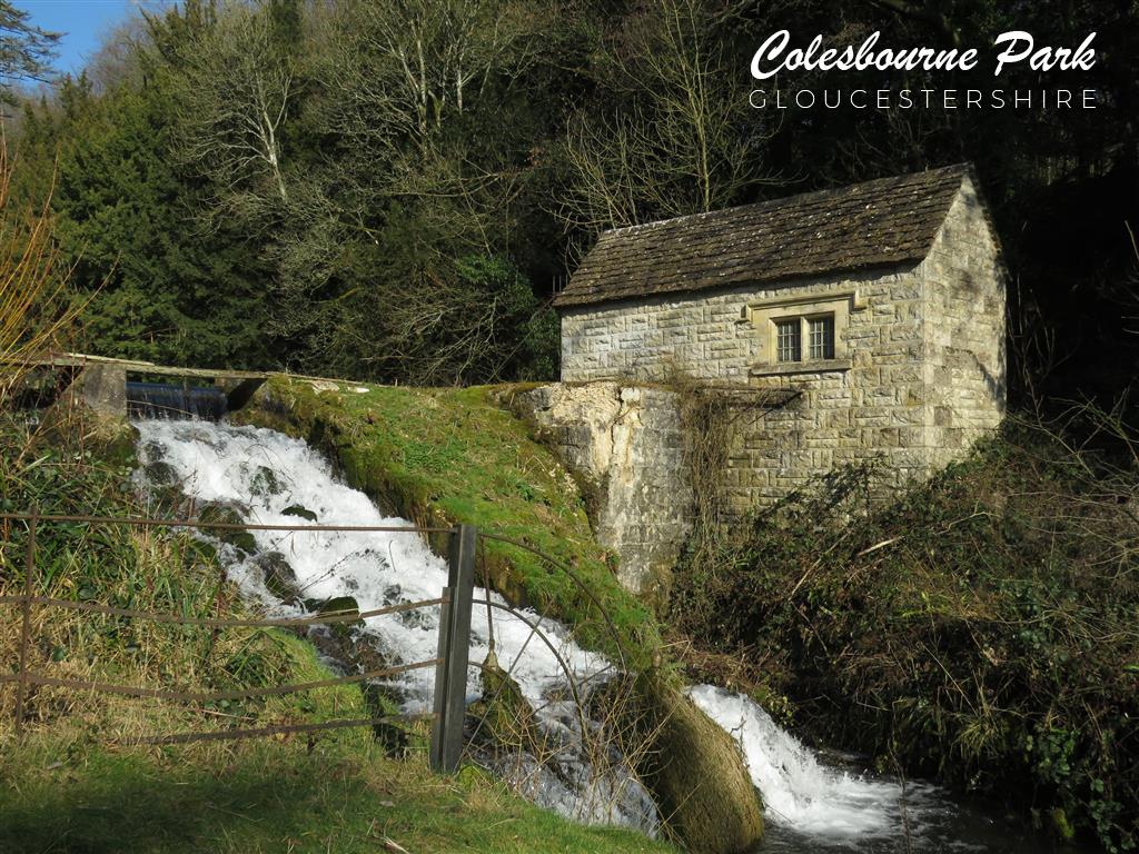 Colesbourne Park, Gloucestershire
