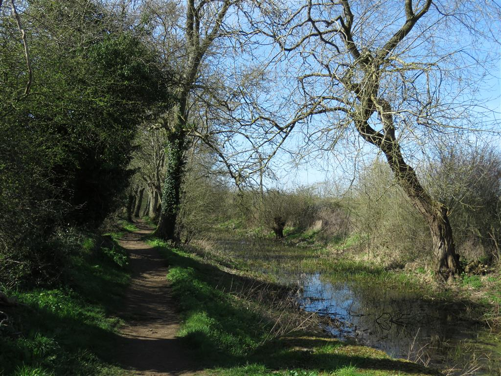Walking in the Cotswold Water Park: Thames and Severn Canal