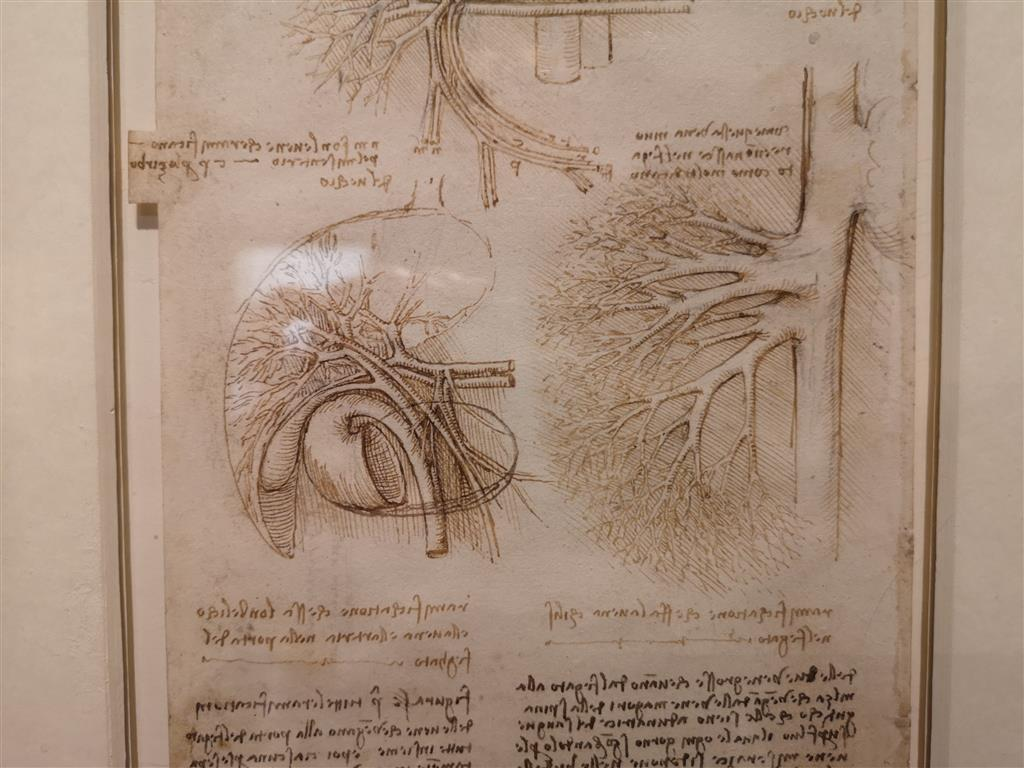 Da Vinci Exhibition, Millennium Gallery, UK