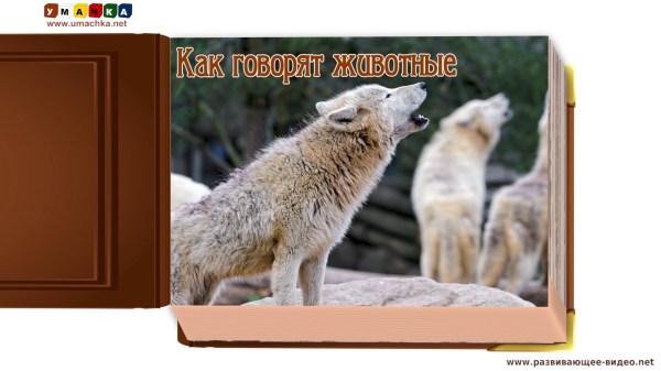 Как говорят животные (звуки животных) — развивающее видео ...
