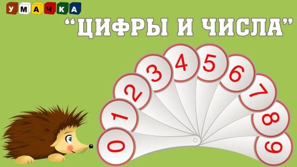Цифры и Числа — Развивающий мультфильм — Ёжик Жека ...