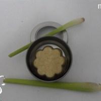 <!--:de-->Mildes Shampoo mit Zitronengrass<!--:--><!--:fr-->Shampoing doux Lemongrass<!--:-->