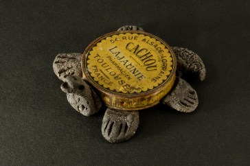 Petite tortue Cachou