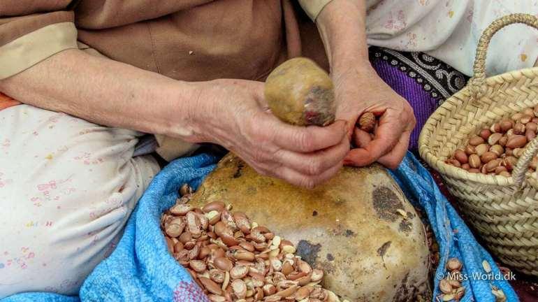 Argan nødderne åbnes ved håndkraft. Der skal nok en del blå fingre til, før teknikken helt sidder der.
