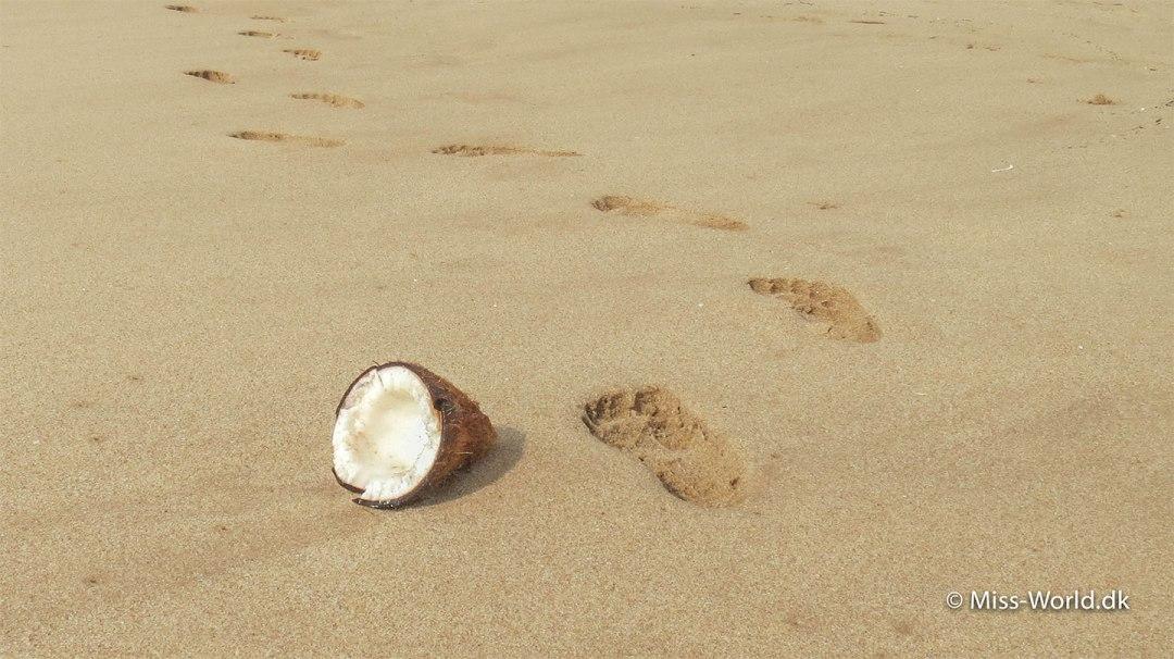 Tropisk strand i Sri Lanka