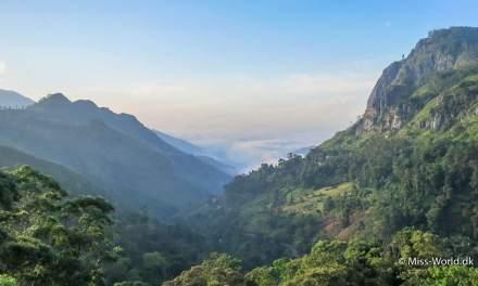 Smukke Ella i Sri Lanka's bjerge ♡