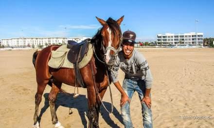 På stranden i Essaouira mødte jeg Ismail og hans hest