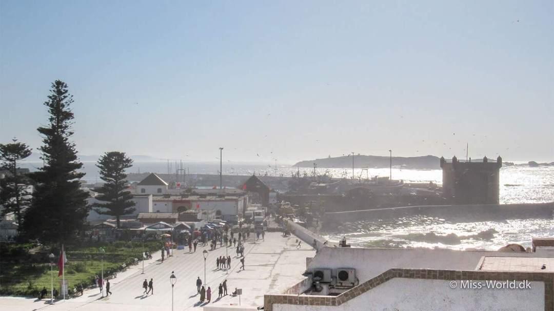 Harbour Essaouira Morocco