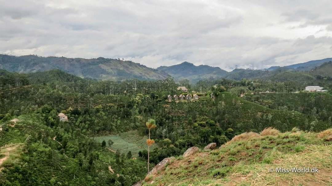 Fra Little Adam's Peak er der udsigt til tefabrikken og 98 Acres, som er Ella's mest kendte hotel
