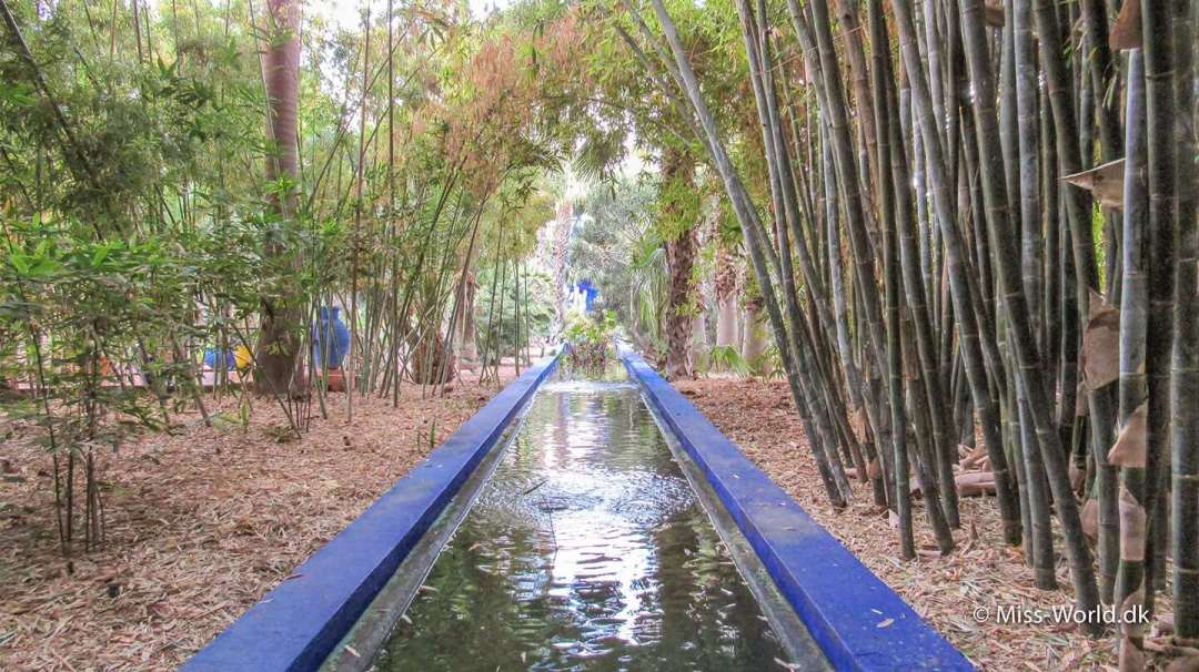 Majorelle-haven i Marrakesh