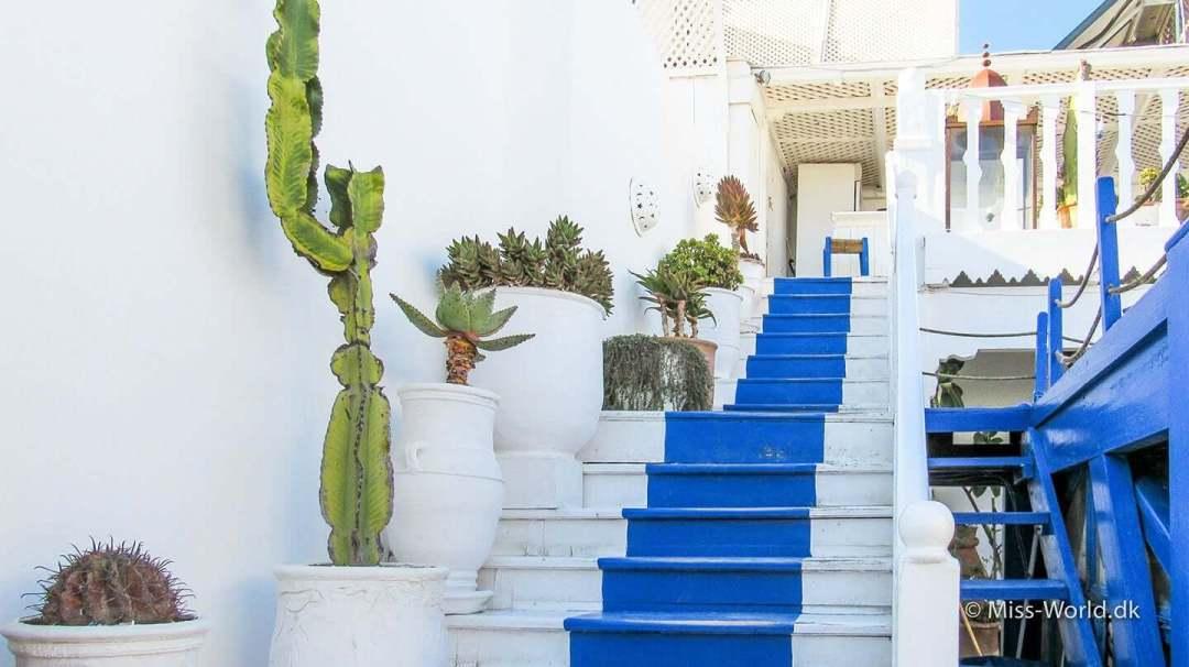 Restaurant Essaouira Morocco