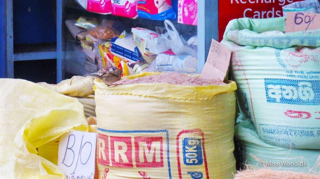 Nuwara Eliya Sri Lanka - Birds eating rice outside shop