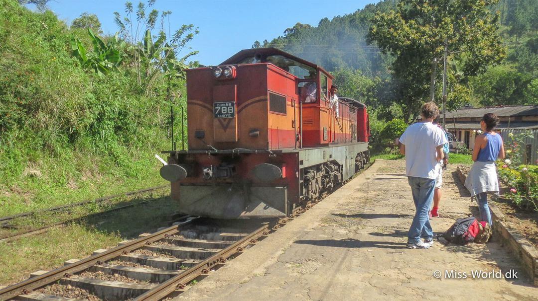 Toget mod Colombo på togstationen i Ella Sri Lanka
