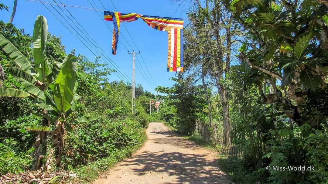 Vesak - Buddhist flag in Ahangama, Sri Lanka