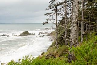 the Washington Coast