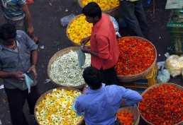 mumbai-flower-mart
