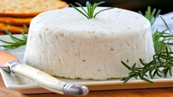 Как сделать домашний сыр из козьего молока. Рецепты ...