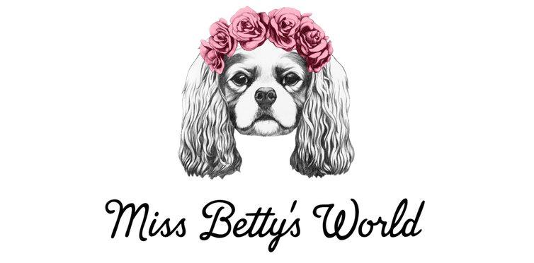 Der Hunde-Lifeblog