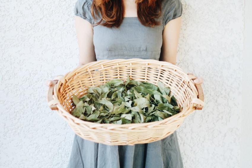 Declutter Challenge | 1 mois pour se séparer de 496 objets - Minismalisme Ecologie - Miss Blemish
