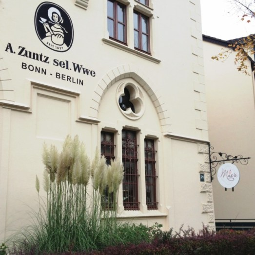 Maes Cafe Bonn Vegan Restaurant neu Bonn vegetarisch südstadt