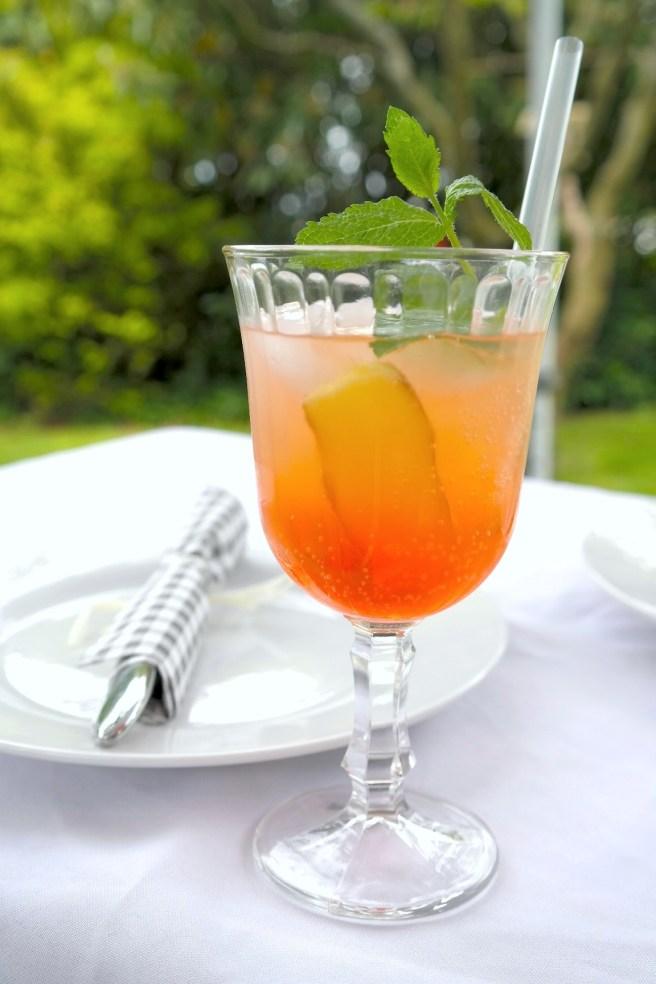 Aperol Lemon Spritz neues Sommergetränk Aperitif Gartenparty Missbonnebonne