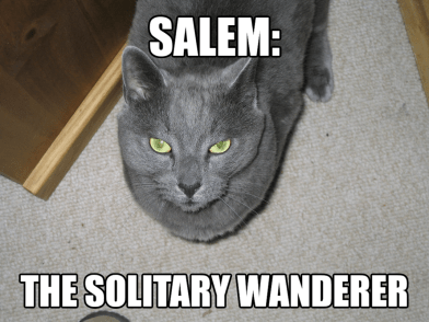Salem - The Solitary Wanderer