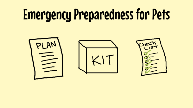 Emergency Preparedness for Pets