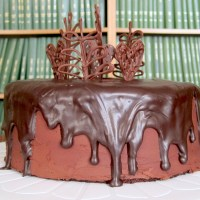 Chocolate Quintet Cake