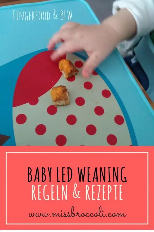 Fingerfood BLW Baby Led Weaning rezepte regeln
