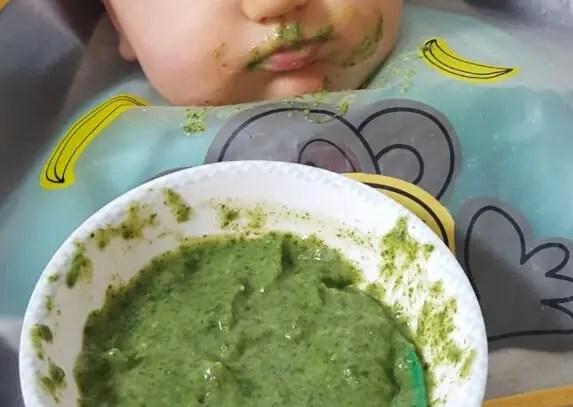 Babybrei mit Spinat