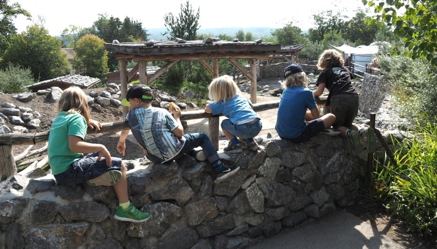 Kinder, Zoo Zürich, Züri Zoo, Ausflugstipp, Tagesausflug, familie, kinder, mamablog, schweiz, ferien, mobiliar, rabatt, kooperation