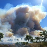 Outback Cattle Station: Fire Season