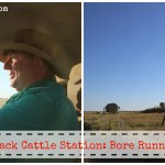 Outback Cattle Station: Bore Runner