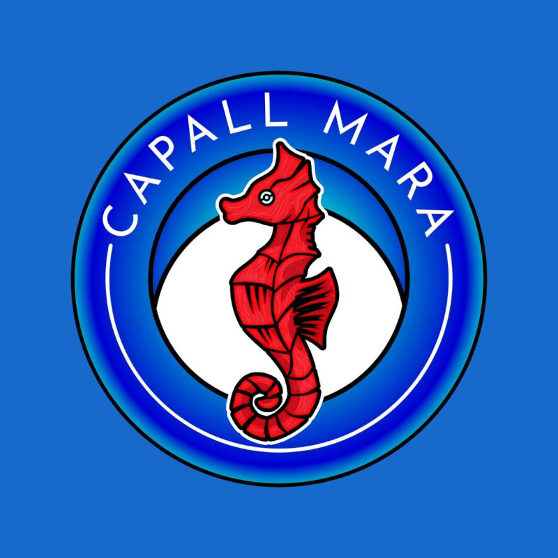 Capall-Mara-Sponsors-Miss-DE