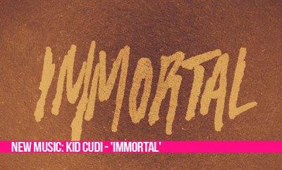 Kid Cudi Complex 2013 - iwate-kokyo