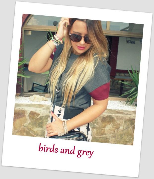 birds and grey