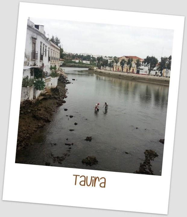 TAVIRA MISSESTRATAGEMAS