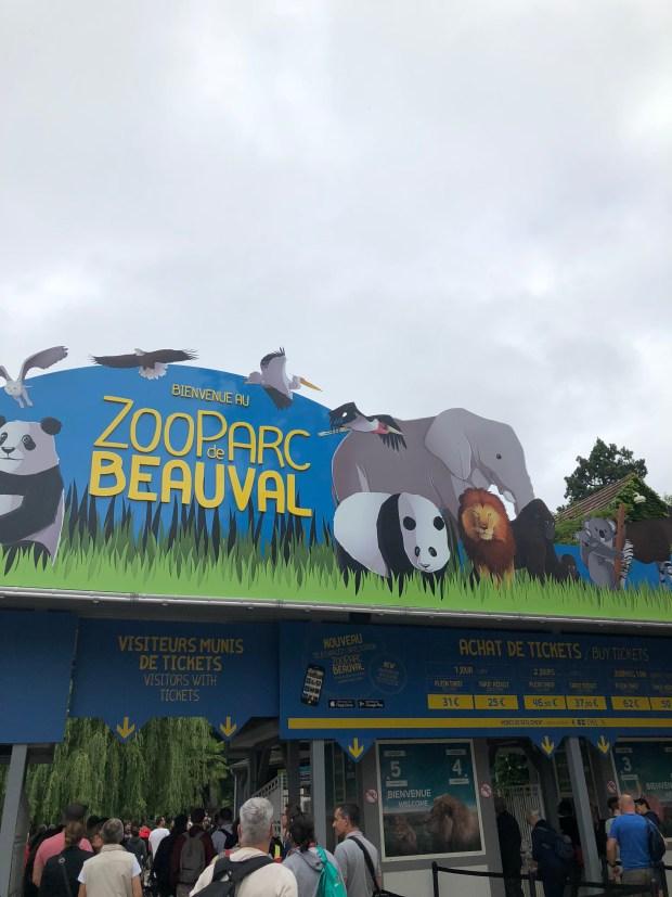 zoo_beauval_niños (3)