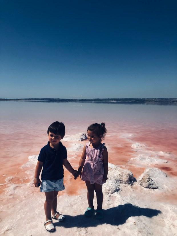laguna rosa torrevieja (15)