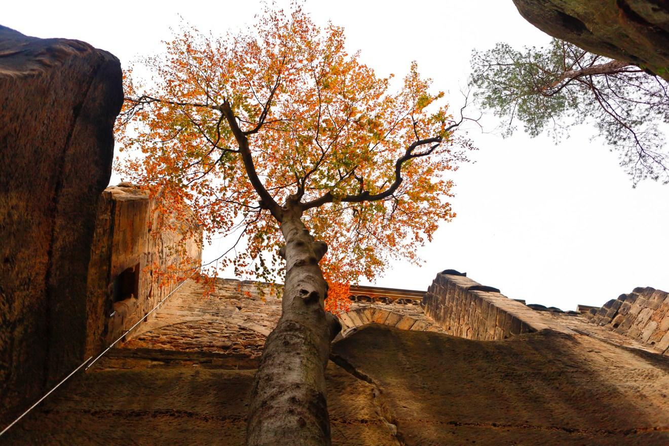 Herbstimpressionen in Sachsen auf unserer Tour durch die Oberlausitz