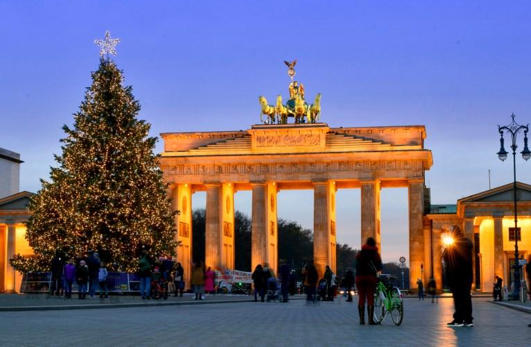Der stille Tanz der Weihnachtsbäume