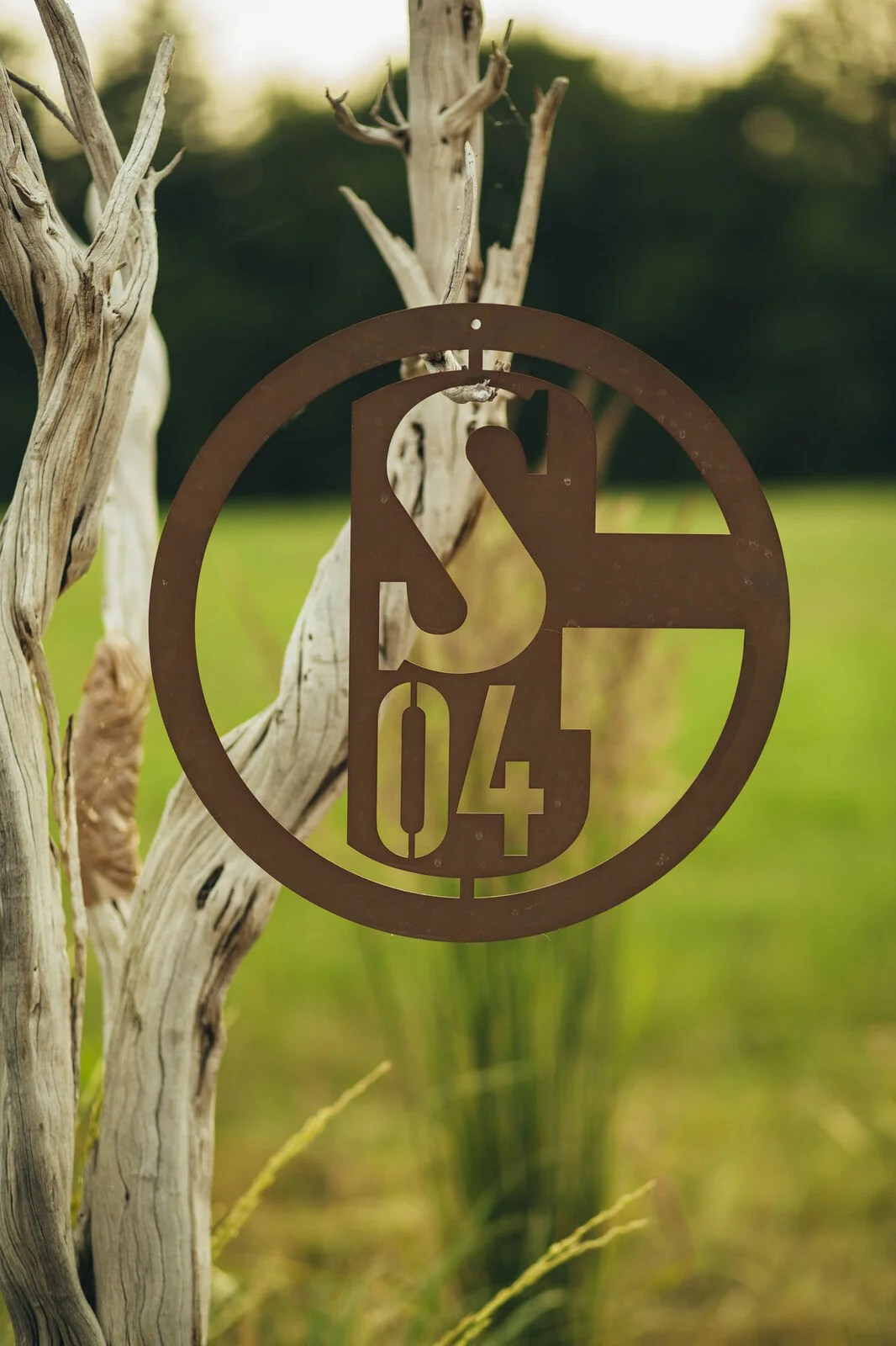 Logo FC Schalke 04 | Missforty