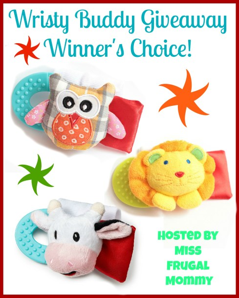 Wristy Buddy Giveaway (Winner's Choice)