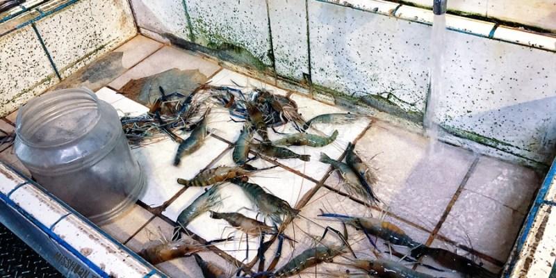 宜蘭五結釣蝦場推薦【太平洋釣場】泰國蝦/斑節蝦/草蝦/海釣魚池通通都釣的到!根本就是間餐廳!熱炒/活蝦料理/代客料理/火鍋/自助碳烤