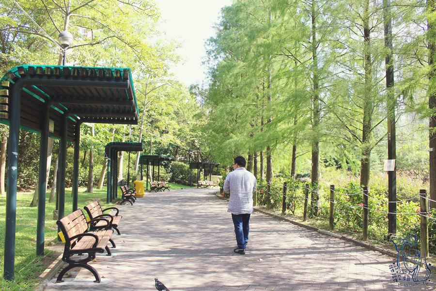 香港葵青景點   青衣公園 TSING YI PARK 歐陸式設計 運動 兒童遊樂區 野餐 登山健行 餐廳 球場 親子同遊的大公園 青衣市中心 港鐵青衣站