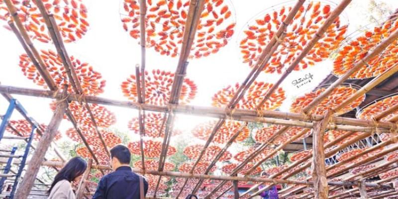 新竹新埔景點   味衛佳柿餅觀光農場 橘油油一片曬柿場超好拍 9至1月天天免費開放參觀 新竹特產伴手禮 柿餅加工站