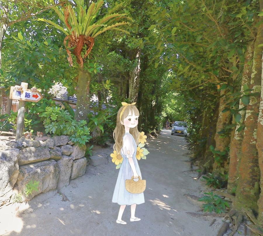 沖繩本部町景點【備瀬のフクギ並木/備瀨福木林道】來去北部海灘玩水~騎單車!還可搭乘水牛拉車喔!